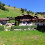 Hotel Pictures: Apartment Gipfelblick, Hollersbach im Pinzgau