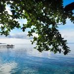 Raja Ampat Dive Resort, Tapokreng