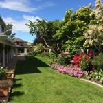 Qiwei Villa, Christchurch