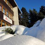 Hotel Pictures: Hotel Andromeda, Ostružná