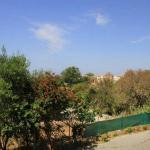 Palm Apartment, Paphos City