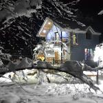 Φωτογραφίες: Cobalt cottage, Zaqatala