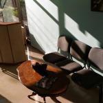 Hotellikuvia: Hotel Kombinat, Pinet