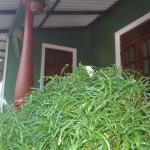 Green Bamboo House, Sigiriya