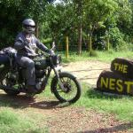 The Nest,  Elewala