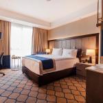 Holiday Inn Kayseri - Duvenonu, Kayseri
