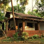 3 Cottages,  Anjuna