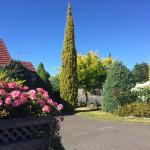 Qiwei Holiday House, Christchurch