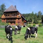 Griesbachhof Ferienwohnung, Titisee-Neustadt