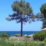 Hotel Pictures: Sant Ambroggio Solanne, Lumio