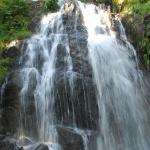 Hotel Pictures: Logis De La Grande Cascade, Le Tholy