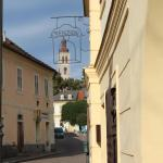 Hotel Pictures: Penzion U Brány, Kutná Hora