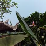 Tam Tinh Vien Homestay, Hue