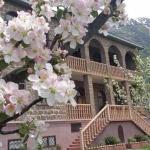 Gogi Alibegashvili Guesthouse,  Kazbegi