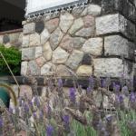 酒店图片: Posada Del Angel, Villa Serranita