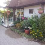 Hotel Pictures: Le Mas Des Lilas, Escolives-Sainte-Camille