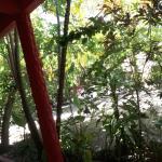 Pousada Cajueiro,  Ilha de Boipeba