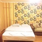 Apartment Inzhir na Novoselov 5, Sochi