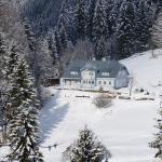 Hotel Pictures: Modry Pavilon, Dolní Malá Úpa