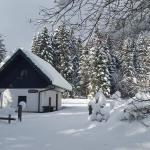 Počitniška hiša Ukanc, Bohinj