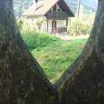 Hisa V Sadovnjaku, Logje