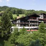 Hotel Alpenhof Messmer, Schruns