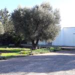 Villa Serrazze, Nardò