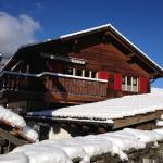 Hotel Pictures: Tgea sulagliva, Andeer