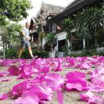 Wisdom laos hotel, Luang Prabang