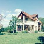 Yellow House, Dejani