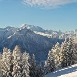 Hotel Pictures: Chalet Laackerhof, Bettmeralp