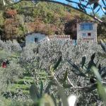 La Torricella, Torricella in Sabina