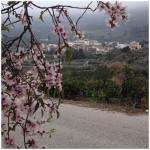 Hotel Pictures: Casa Rural Estrella, Beniali