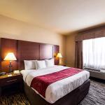 Comfort Suites At Plaza Mall, McAllen