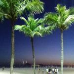 1 minute to Copacabana Beach,  Rio de Janeiro
