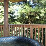 Hotel Pictures: Reef Point Cabins, Ucluelet