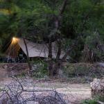 Baviaanskloof Tented Camp,  Quacha