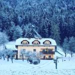 Tourist farm Kolar,  Ljubno