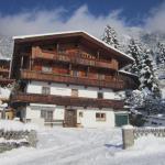 酒店图片: Alpbachblick, 阿尔卑巴赫