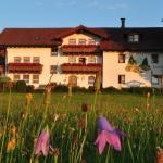 Bauernhof Bauer,  Zwiesel