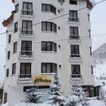 Hotel Alpina Mavrovo,  Mavrovo