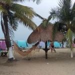 Hotel Pictures: Finca Casa Blanca, Coveñas