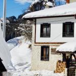 Hotelbilleder: Kutsinska House, Progled