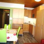 Appartement Little Rose, Tauplitz