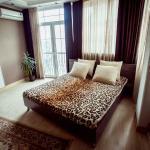 Apartment on Navoi 58, Almaty