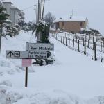 Agriturismo San Michele, Cossignano