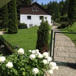 Hotel Pictures: Ferienwohnung Ebnisee, Ebni
