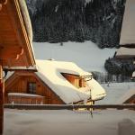 Foto Hotel: Bergdorf Riesner, Donnersbachwald