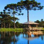 Hotel Pictures: Fazenda Santa Rita Turismo Rural, Bom Jardim da Serra