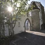 Hotel Pictures: Schloss-Hotel Wartensee, Rorschacherberg